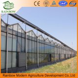 Полый Изолированный Фасад Здания Стеклянная Теплица для Овощей и Растений
