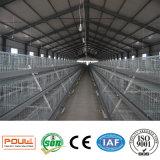 직접 공장 전체적인 판매를 위한 안정되어 있는 가금 보일러 새 닭 감금소