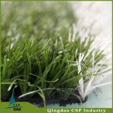 小型フットボールのための芝生を持つWhriteの草