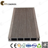2015 Hot Sale Plancher en plein air Floor WPC Garden Decking (TS-01)