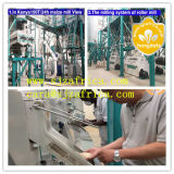 филировальные машины маиса филировальной машины муки маиса 10-150t/24h