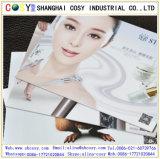 Chaud-Vente de la feuille de mousse du panneau de mousse de PVC/PVC Celuka pour la publicité extérieure et la décoration