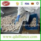 IQF gefrorener organische Ingwer-Paste zerquetschter Ingwer mit Brc CERT