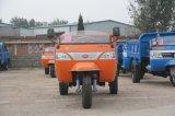[وو] ثلاثة عجلة شاحنة ([وك3ب1920102])