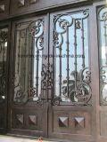 손은 썩음 철 등록 문 디자인을 위조했다
