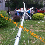 Piccola turbina di vento verticale di asse