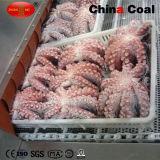 Handelsindustrie schnelle Ckitchen Kühlraum-Gefriermaschine