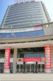 Moteur de Lenze porte pivotante pour un grand immeuble commercial