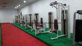 De commerciële Machine van Tricep van de Apparatuur van de Gymnastiek van de Geschiktheid voor Verkoop