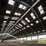 Bétail de structure métallique jetés avec le coût bon marché