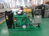 Мини-завод по производству биогаза на ферме коровы отходов для производства электроэнергии