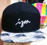 100% gorra de béisbol bordada algodón del deporte
