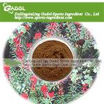 Rhodiola rosea Extract (Rosavin)