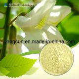Rutina 95% dell'estratto di Japonica del Sophora