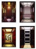 Dsk木ファイルホテルの乗客のエレベーター