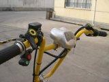 Förderung-Pedal und elektrische Pedicab Rikscha