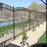 Загородка фабрики орнаментальная стальная/гальванизированная или порошок Coated плавательного бассеина загородка