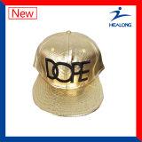 Gorra de béisbol de la sublimación de la insignia del bordado de la ropa de deportes del diseño de la manera de Healong