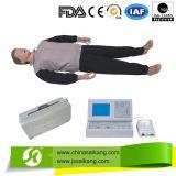 専門職業的業務の高度CPRのトレーニングの人体摸型