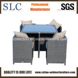 Meubles extérieurs d'économie de l'espace/meubles extérieurs imperméables à l'eau (SC-B6133)