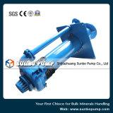 Effluente verticale resistente che tratta le pompe centrifughe dei residui