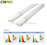 Luz fluorescente Cp-T806-9W 16W 18W 23W del tubo T8 del LED para el uso 3000-6000K de la casa con el Ce RoHS