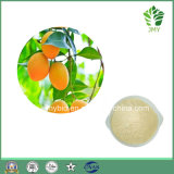 高品質95% Magniferinのマンゴの葉のエキス