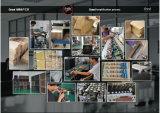 """De professionele Fabriek levert de """" Versterker van Gitaar 10 30W (gc-30)"""