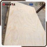 Compensado de madeira de pinus para construção usados