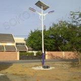 Réverbères solaires esthétiques du bras 60W LED de double de conception