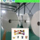 Papel revestido del PE de Eco-Freindly para la taza de papel y el rectángulo de papel