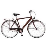 La UE popular de la velocidad del nexo 3 sirve la bici de la ciudad (FP-CB-S01)