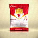 Supplément de forte stabilité de Probiotics de marque de distributeur (tablette, capsule, palette, perle, sachet)