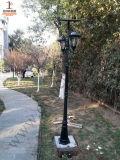 luz solar del jardín 10W con las pistas dobles (DZ-TT-212)
