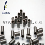 Ck에 의하여 소결되는 알파철 자석 Φ 2.0*Φ 1.3*3.4mm