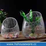 De geknapperde Éénkleurige Vaas van het Glas van de Vorm van de Bal