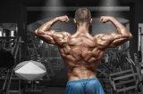 다양한 Prohormone 보디 빌딩 Sarms 높은 순수성 Sarm Sr9009 1379686-30-2 치료 근육 낭비