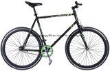 연안 무역선 브레이크를 가진 RC700kq-Ca01 700c 사이트 운영하는 자전거