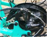 48V 500W 4.0インチの脂肪質のタイヤの電気マウンテンバイク