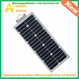 15W LED LiFePO4 리튬 건전지를 가진 태양 정원 가로등