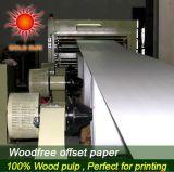 Papier 100% excentré de pâte de bois de Vierge