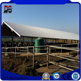 Los grandes edificios metálicos prefabricados amplia casa de granja de ganado