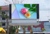 Étalage P8 de publicité polychrome extérieur