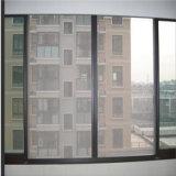 Maglia dello schermo della finestra dell'insetto della vetroresina di vendita diretta della fabbrica