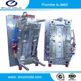 OEM de Hoge Precisie paste de AutoVorm van de Injectie van Waistrail van de Deur Plastic voor Personenauto/BedrijfsAuto/Cabine aan