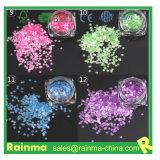 Pet ecológica Polvo Glitter polvos glitter láser
