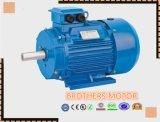 Motor de indução trifásico da série Y2