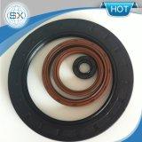 Pièces de moteur NBR FKM Silicone Rubber Tc Joint d'étanchéité à l'huile hydraulique
