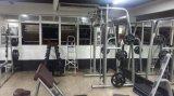 Macchina diritta di /Club della strumentazione di ginnastica della macchina di uso del vitello Tz-6049 /Gym/della strumentazione costruzione di corpo