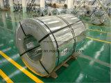 電流を通された鋼鉄(大きいスパンコール)